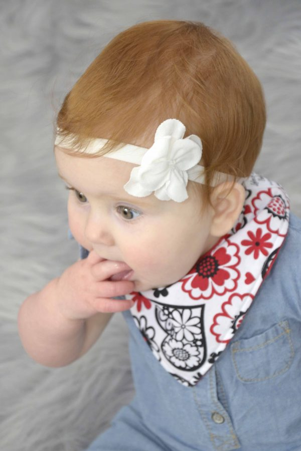 Red Hearts Bandana Bib