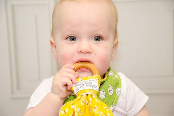 Honey Bees Teething Ring - Everett